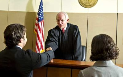 Learn Good Legal Writing and How to Win in Court